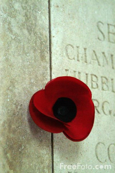 Picture of a Poppy, The Menin Gate, Ypres